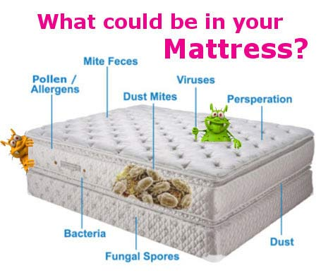 Diagram showing what can be in a mattress